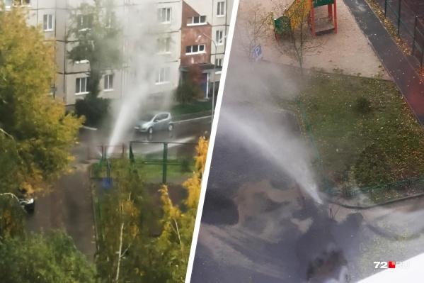 Жители многоэтажки на Стахановцев, 1 в шутку назвали фонтан кипятка бесплатным термальным источником и автомойкой