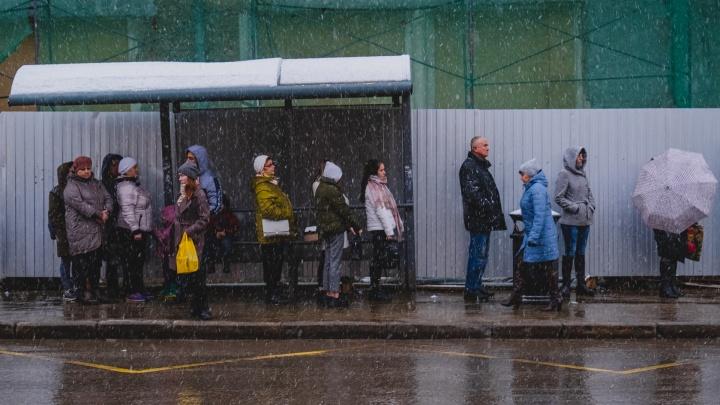 Какая погода в Прикамье будет в первую неделю ноября? Рассказывают в Гидрометцентре