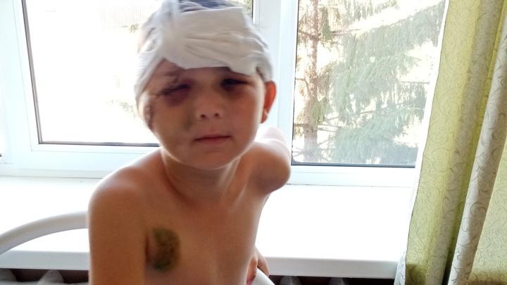 В Башкирии у 9-летнего ребенка, которого сбила машина «Почты России», нашли в крови алкоголь