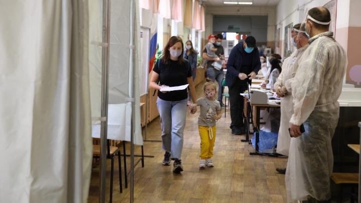 Как в Ярославской области голосуют по поправкам к Конституции: список лидеров по явке