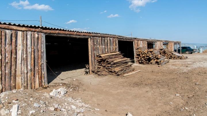 Под Волгоградом сезонный рабочий погиб в загоревшейся теплице