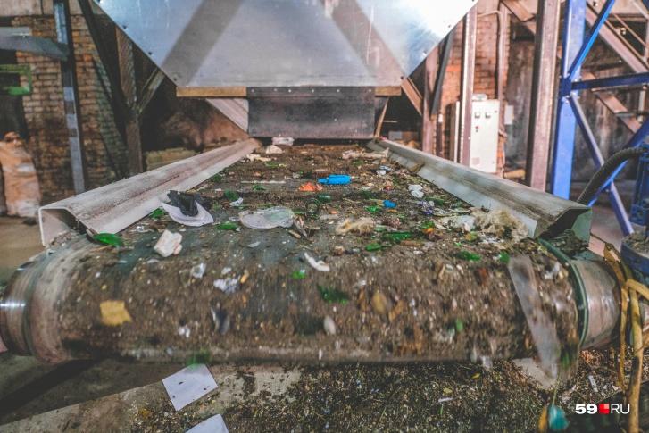 Сейчас здесь сортируют 20 тонн мусора в сутки
