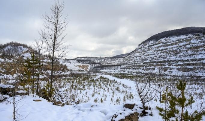 Национальный парк «Самарская Лука» закрыли для посещения