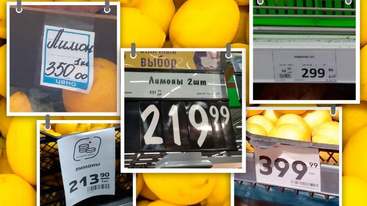Что происходит с лимонами в Челябинске? Гуляем по магазинам и удивляемся ценам