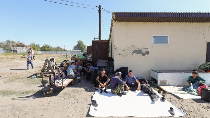Поезд увез в Узбекистан большую часть застрявших на Дону мигрантов