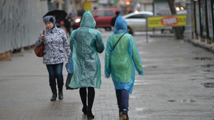 В Екатеринбурге за сутки выпадет треть месячной нормы дождей