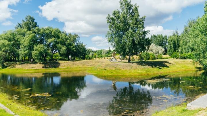 В Омске от дендросада отрезают кусок — теперь на нём можно строить