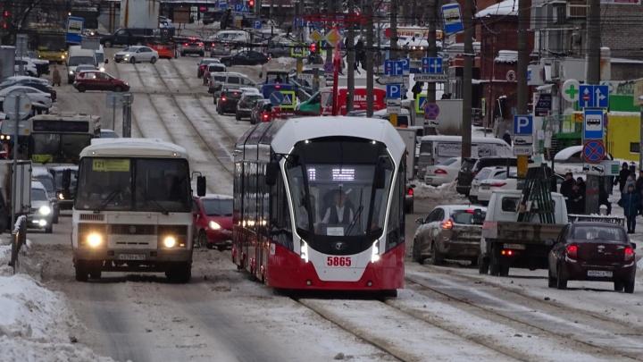 Мэрия Перми заключила контракт на поставку 15 новых трамваев «Львенок»