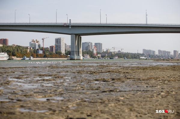 """Река обмелела не так сильно, как <a href=""""https://161.ru/text/gorod/66369469/"""" target=""""_blank"""" class=""""io-leave-page _"""">в ноябре прошлого года</a>, но всё равно"""