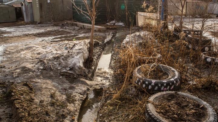 Одно тело дома, два в огороде: в Новосибирской области задержали подозреваемого в серийных убийствах