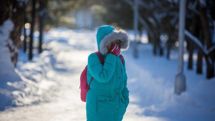 Ждать ли нам морозов? Изучаем прогноз погоды в Новосибирске на ближайшую неделю