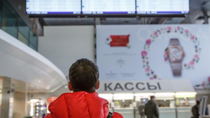 Более 20 рейсов, среди которых Тюмень, не смогли вовремя улететь из московских аэропортов
