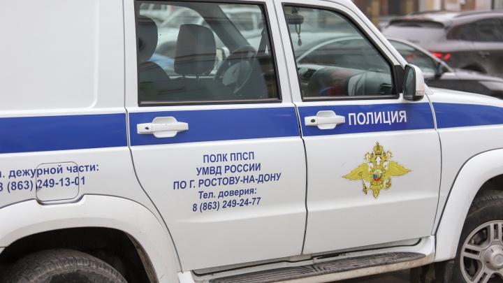 На трассе «Дон» рейсовый автобус насмерть сбил пенсионера