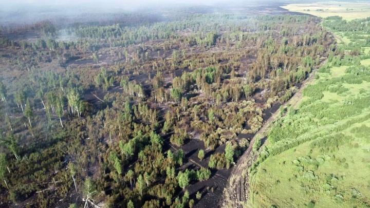 В Зауралье ликвидировали пожар площадью больше 600 гектаров