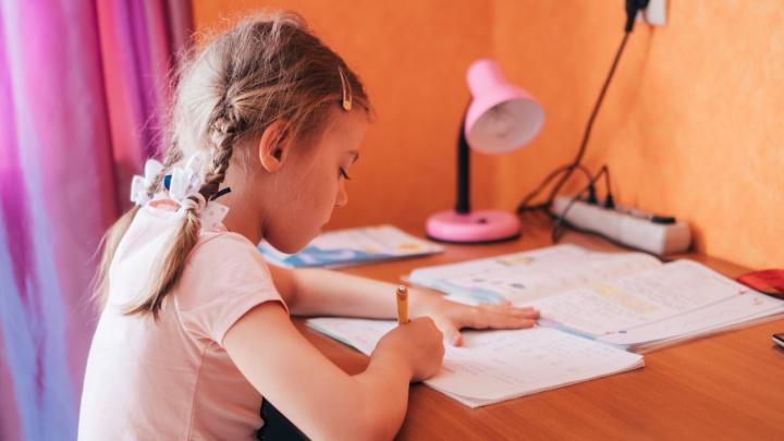 В омской гимназии два класса перевели на дистанционное обучение из-за карантина