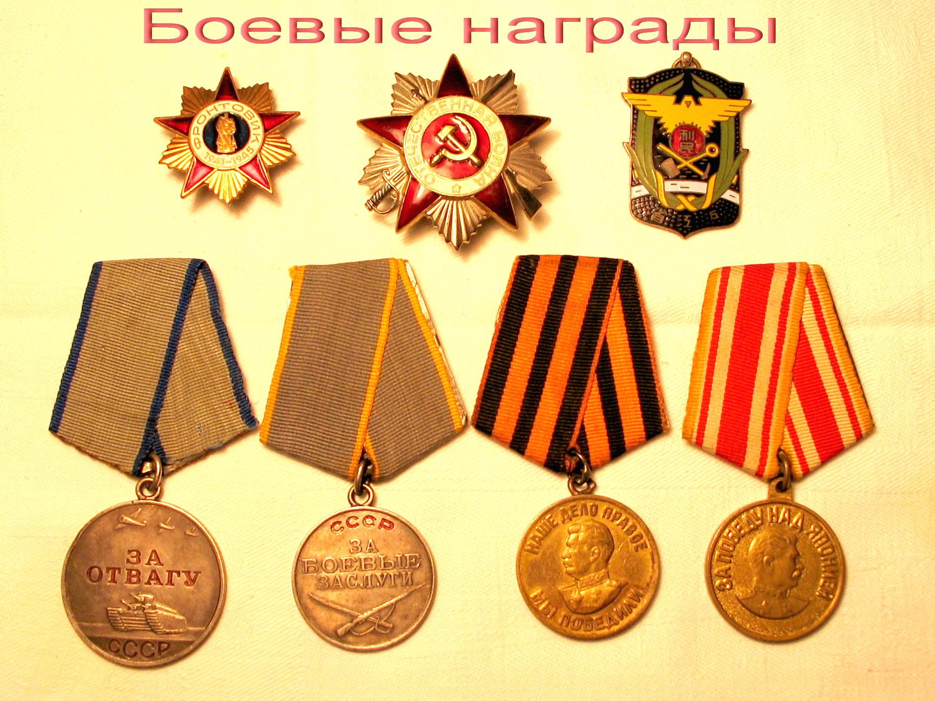 Награды Льва Панчетовского. В верхнем ряду справа — китайская медаль «За спасение утопающих»