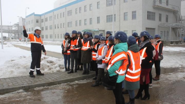 Волгоградские студенты примут участие в разработке концепции парка «Котельниково — Земля Героев»