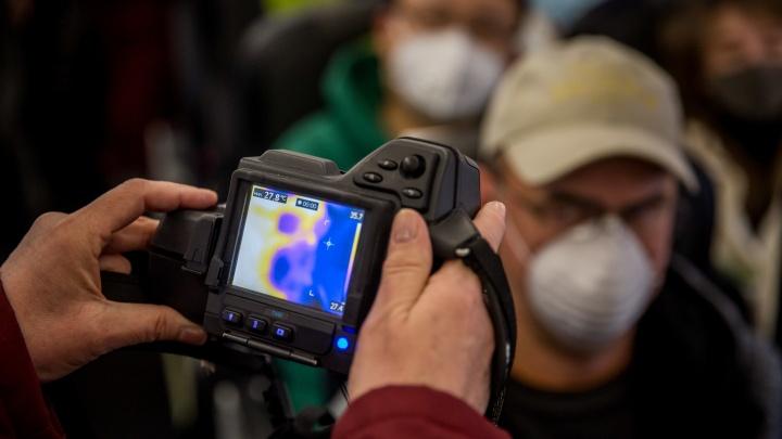 Большую часть новых случаев коронавируса завезли в Челябинскую область из другого региона