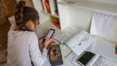 «Некоторые подумали, что это халтура»: учителя и родители школьников Кургана об онлайн-обучении