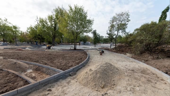 «Будет огромный сортовой набор»: в Волгограде начинают засаживать деревьями вырубленный парк Гагарина