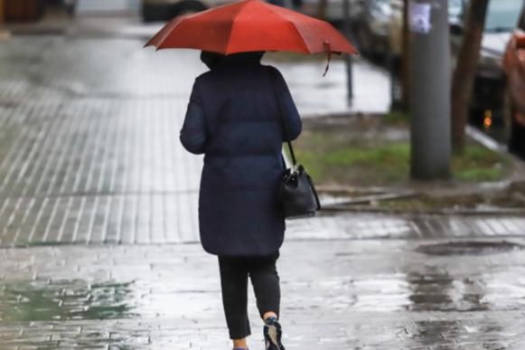 В ближайшие часы в Ростове прогнозируют сильный ветер