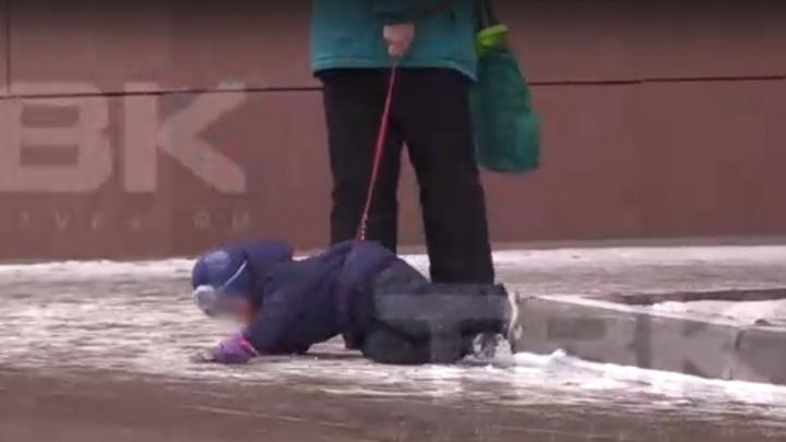 Пожилая женщина протащила ребенка по асфальту на поводке. Теперь ее ищет полиция