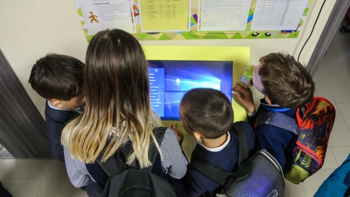 На первом же онлайн-уроке в Башкирии хакеры показали детям «интересные» картинки