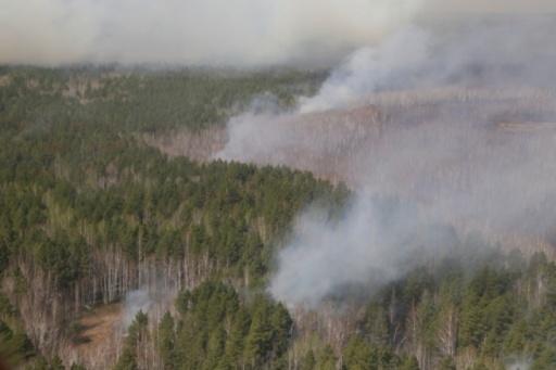 В Зауралье с начала года произошло почти 300 лесных пожаров