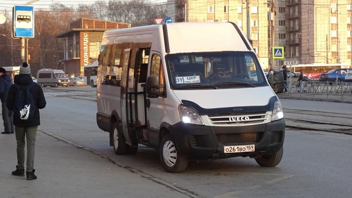 В Перми лишили лицензии маршрутное такси 3т