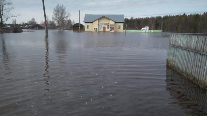 Из-за резкого подъема воды в реке в Гайнском районе ввели режим ЧС