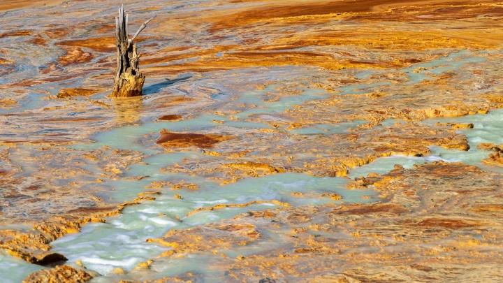 «Полностью выжженная земля»: екатеринбуржец сделал пугающие фото экологической катастрофы на Урале