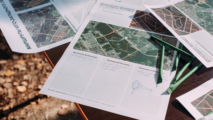Екатеринбуржцев зовут решать, как будет выглядеть Юго-Западный лесопарк