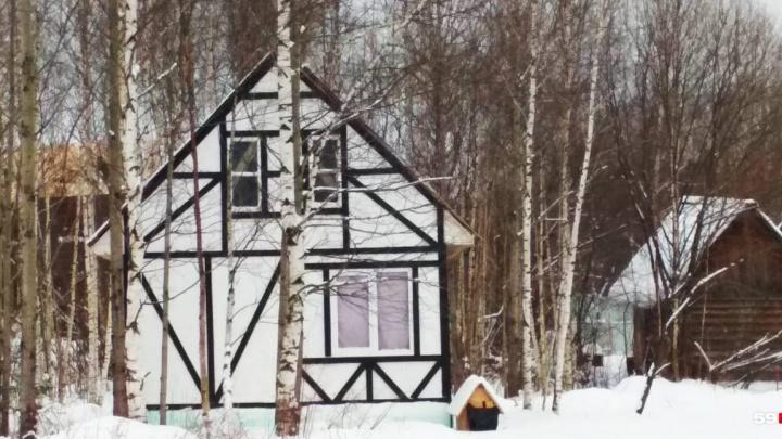 После публикации 59.RU прокуратура проверила законность проведения земельных аукционов в Новобродовском