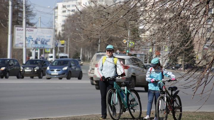 Несмотря на самоизоляцию, в Башкирии пройдут субботники