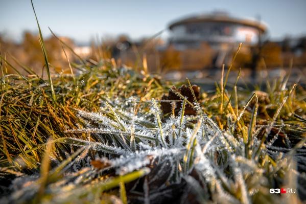 Почва при температуре ниже нуля может пострадать