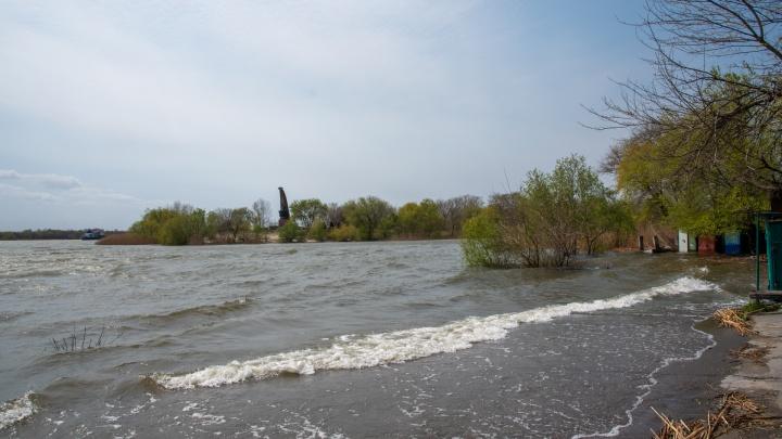 Дон растерял берега: фоторепортаж с побережья Ростова, где поднялась река