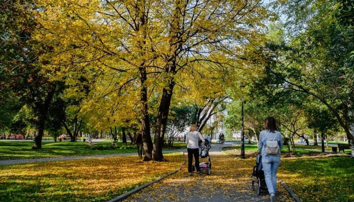 Не только земля, но и квартира: в Прикамье могут принять новый законопроект о выплатах для многодетных