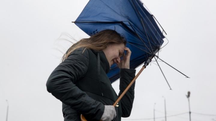 Экстренное предупреждение МЧС: в Ярославской области ожидается сильный холодный ветер