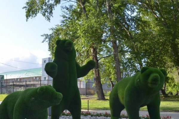 Эти медведи — пример топиарных фигур, семейство «живёт» в Саду Победы