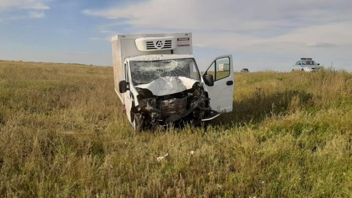 В Челябинской области «Газель» насмерть сбила водителя иномарки, стоявшего на обочине