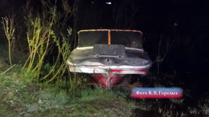 В Свердловской области поймали браконьера, убившего бобра и косулю