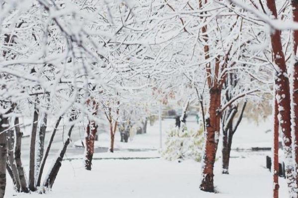 Все утро в Красноярске идет снег