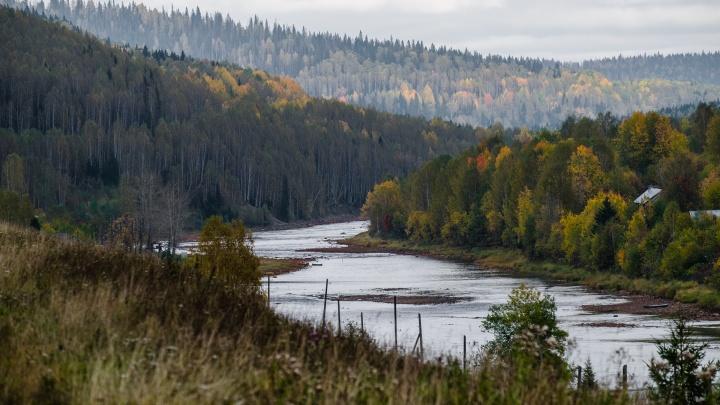 В Прикамье заповедники «Вишерский» и «Басеги» объявили о старте туристического сезона