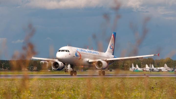 «Уральские авиалинии» на четыре месяца отменили перелёты между Челябинском и Москвой