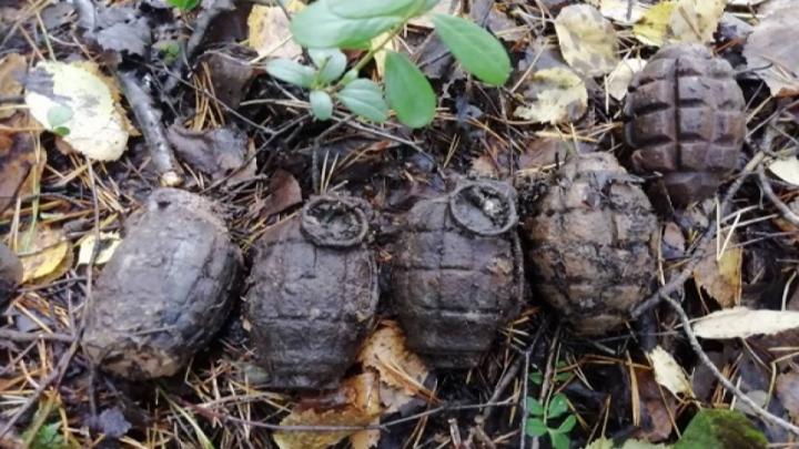 В Плесецком районе нашли шесть гранат времен Первой мировой войны