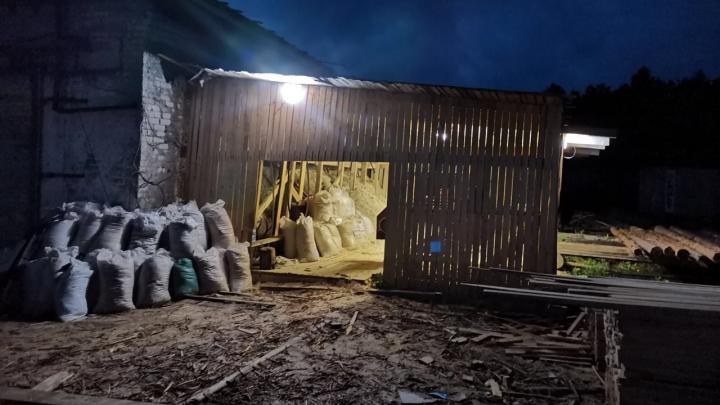 В Няндоме сторож спас пилораму от пожара