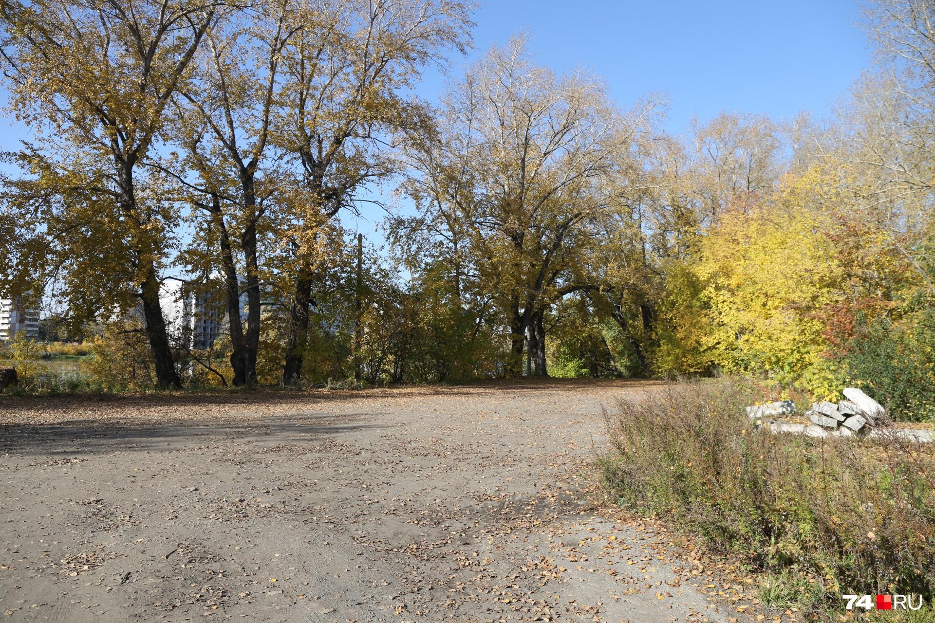 Новый сквер-парк появится за бассейном «Ариант» — в сторону проспекта Победы