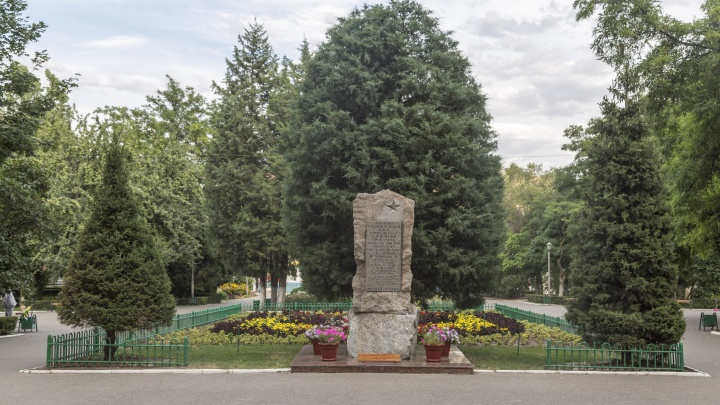 Вырубят и обложат плиткой: в Волгограде готовят благоустройство зеленого сквера рядом с аграрным университетом