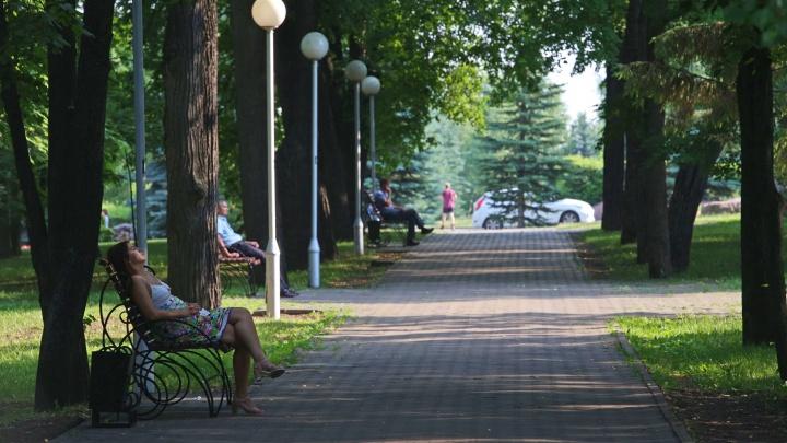 В Башкирию придет жара +38 градусов
