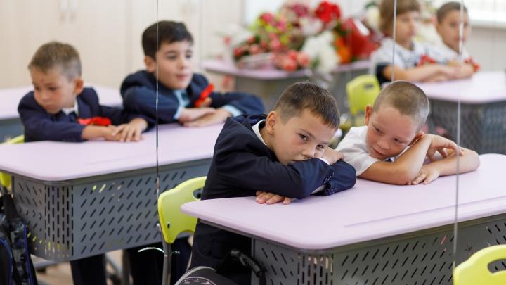 «Детей не тестируют, вот они и не болеют»: в Волгограде и области 40 классов закрыты на карантин по ковиду